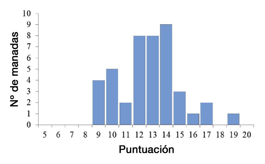 Fig_2_Picaje_plumas_opt.jpg
