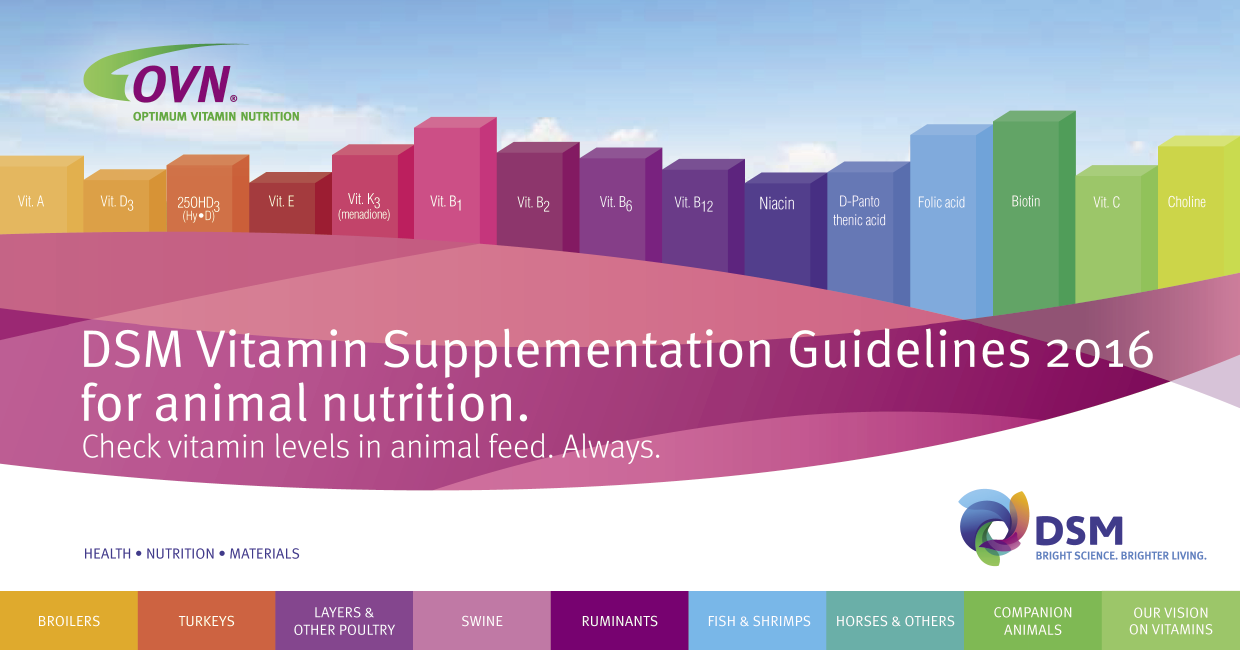 Vitamin_Supp_Guidelines_opt.png