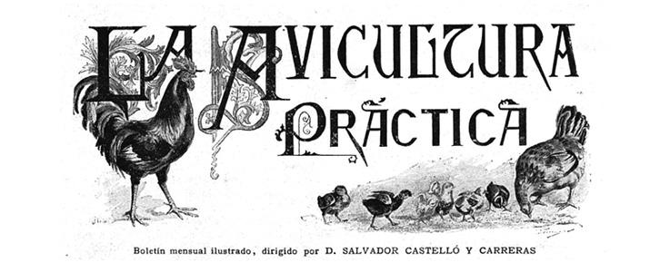 la_avicultura_practica_fmt.jpeg