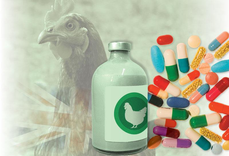 produccion_de_carne_la_vida_sin_antibioticos_0.jpg