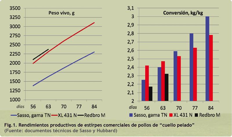 grafico1_rendimientos.png