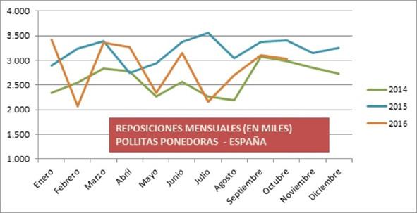 reposiciones_pollitas__opt.jpeg