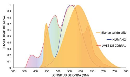 HATO_Article___Figure_4_Warmwhite_LED_spectrum__ES_.jpg