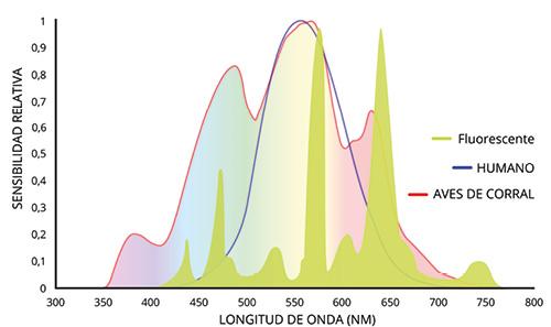 HATO_Article___Figure_5_Fluorescent_spectrum__ES_.jpg