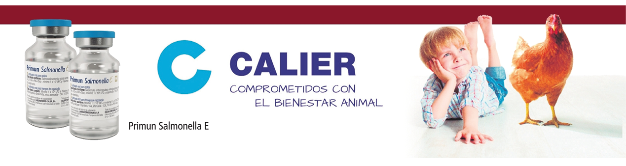 05_AD_SIXTH_CALIER_SUMARIO.png
