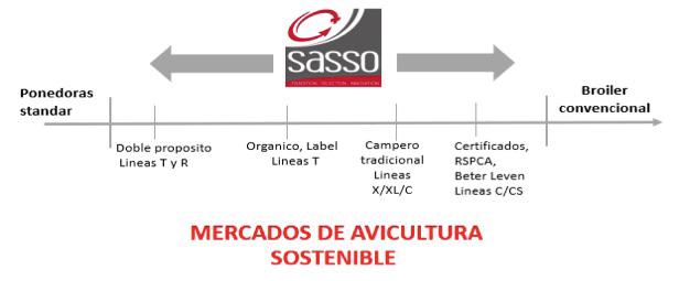 retos_genetica_avicutlura_sasso_siglo_XXI_foto.jpg