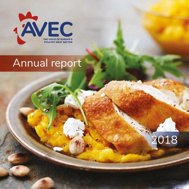 portada_annualreport_AVEC1.jpg