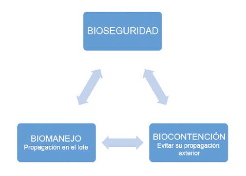 Figura1_bioseguridad.jpg