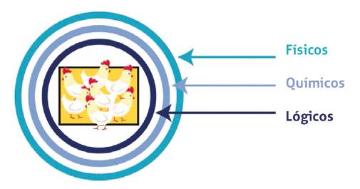 Figura3_bioseguridad.jpg
