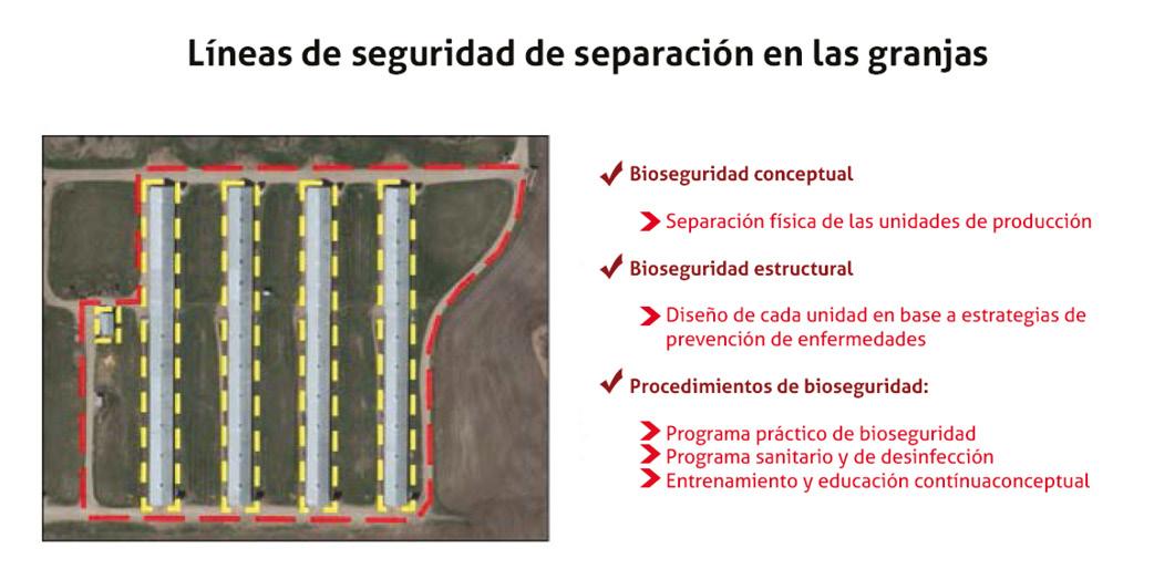 Figura4_bioseguridad.jpg