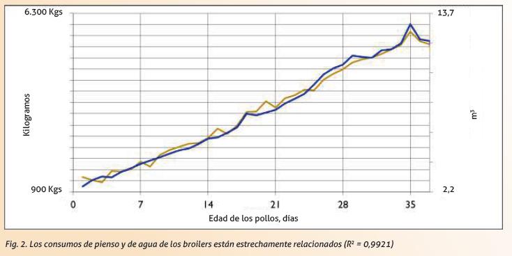 08_SA201906_figura_2_consumo_pienso_y_agua_en_broilers.png