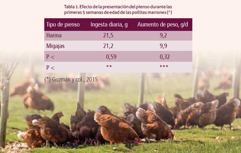 25_SA201906_tabla_1_efecto_presentacion_pienso_pollitas_marrones.png
