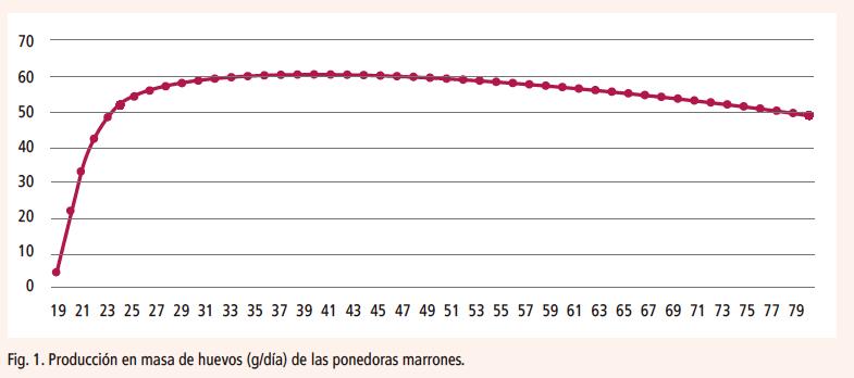 28_SA201906_figura_1_curva_de_puesta_estirpes_ponedoras_marrones.png