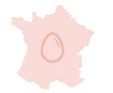 40_SA201906_sexaje_in_ovo_en_francia.png